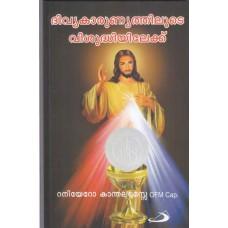 ദിവ്യകാരുണ്യത്തിലൂടെ വിശുദ്ധിയിലേക്ക് (Healing through the Eucharist)